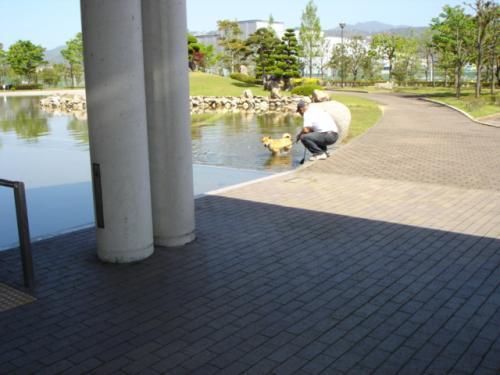 高知美術館・庭