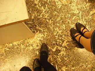 床には木くずがいっぱい!作業してるなぁ~