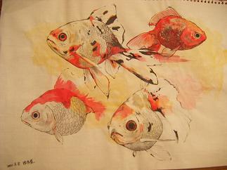 西本屋金魚デッサン