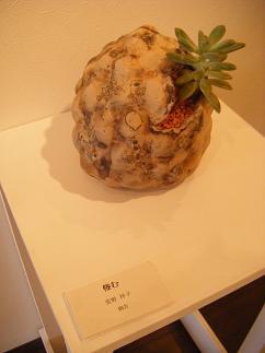 萱野さんの陶芸作品(もこもこ)