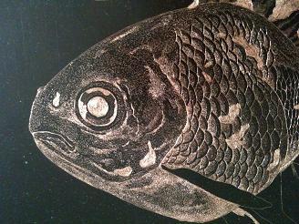 金魚・顔1