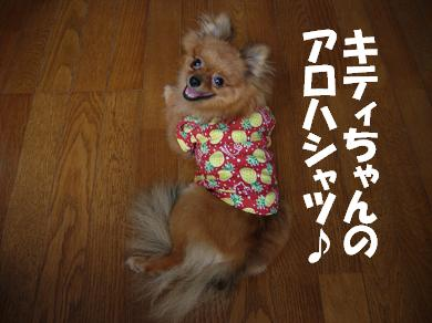 キティちゃんのアロハシャツ♪