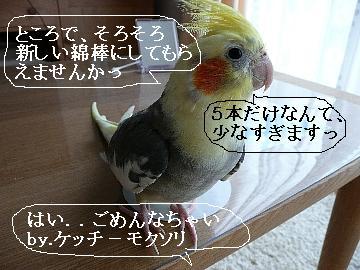 綿棒遊び14