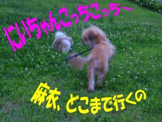2009070503.jpg