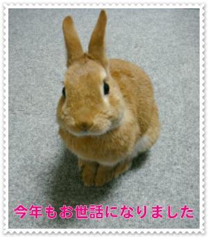 ブログ用DSC04414