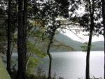 木陰から湖を臨む・・曇っていたのでいささか暗い写真となる