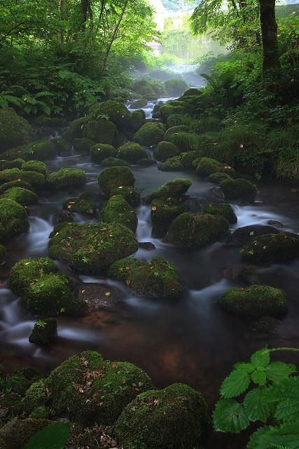 鳥取県奥大山 木谷沢渓谷