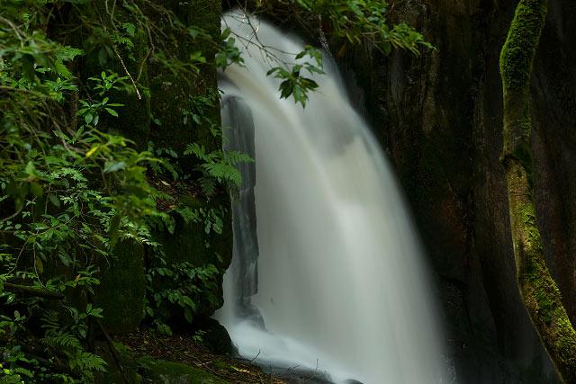 かまこしき渓谷の滝(鳥取県江府町)