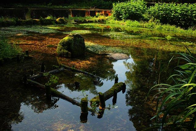白鳳の里~本宮の泉