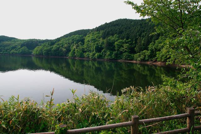 鵜の池 ~県鳥「オシドリ」の飛来する静寂の池~