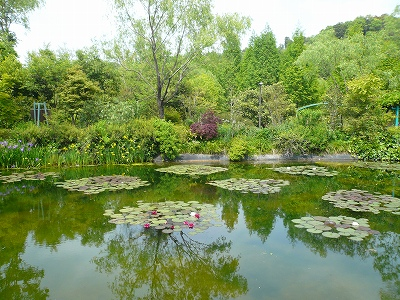 モネの庭 005