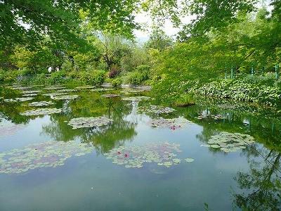 モネの庭 002