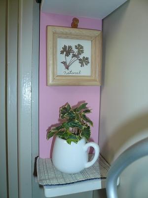 トイレの花ちゃん10月 003