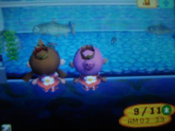 深夜の水族館