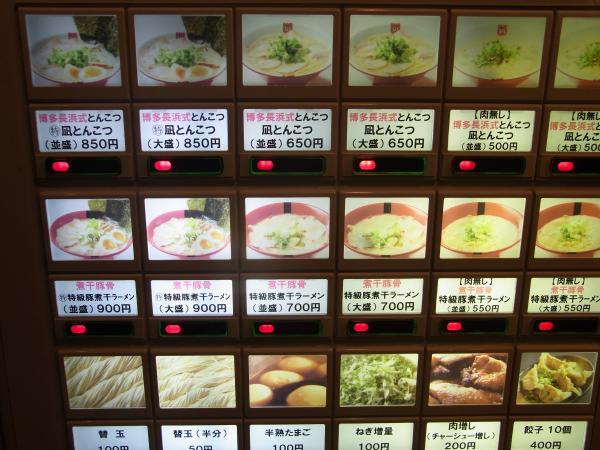 NAGI_2010_0226-2_600.jpg