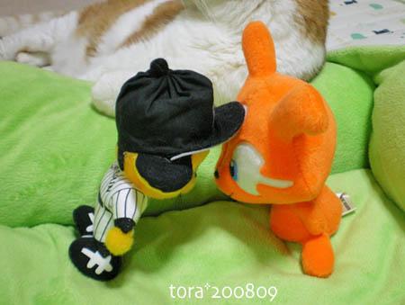 tora08-09-109s.jpg