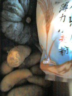 060613_yasai.jpg