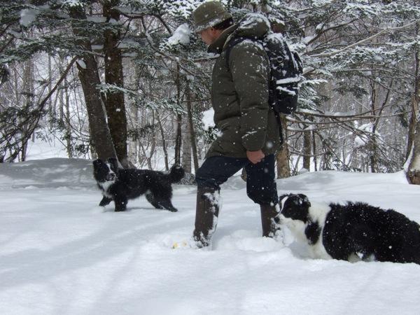 08.0305平湯で豪雪遊び1JPG