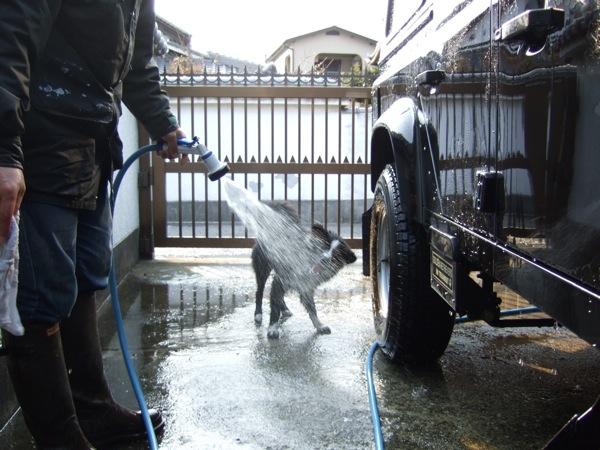 08.0306洗車で水遊びのしゅうJPG