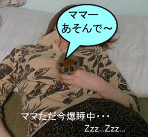 ママ爆睡中