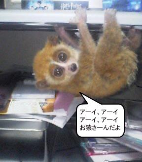 お猿さんだよ