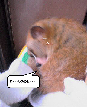 200601043