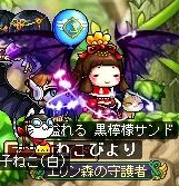 Maple120229_234516.jpg