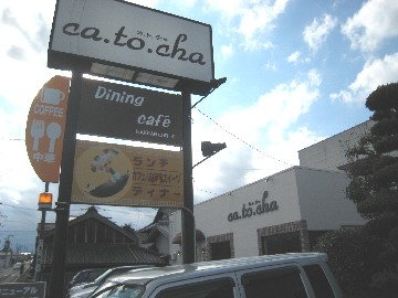 catocha0812-1.jpg