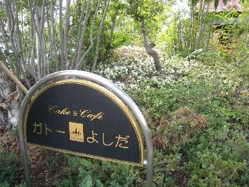 gateauyoshida0809-1.jpg