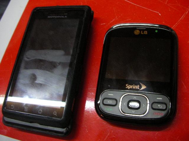 SANY0527.jpg