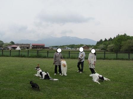 PICT0015八ヶ岳3