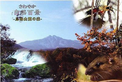 NHK2012-01-29.jpg
