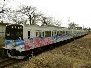 201ec-shikisai-14_c.jpg