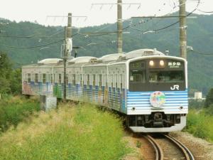 201ec-shikisai-50_c.jpg