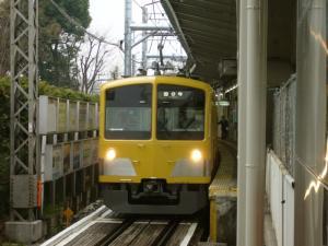 seibu260_c.jpg