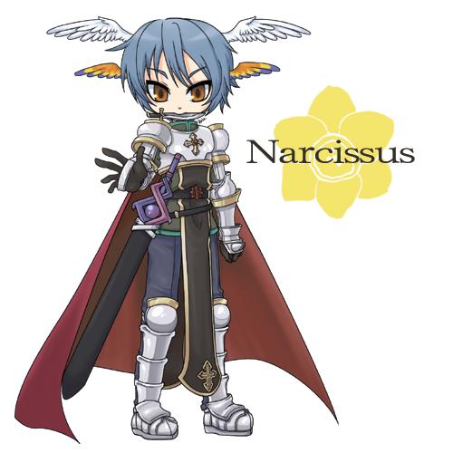 narcissus20090701