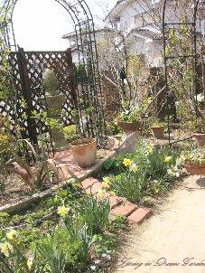 4月初めの庭