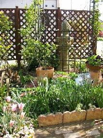 4月の庭の様子