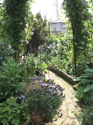 2008年5月の庭