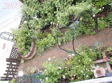 2003年の庭