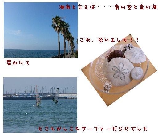 湘南 浜辺にて