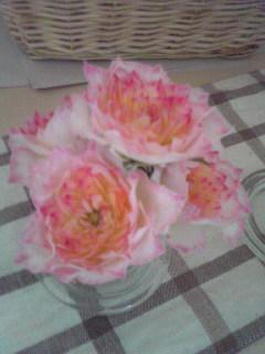 小分けした花1