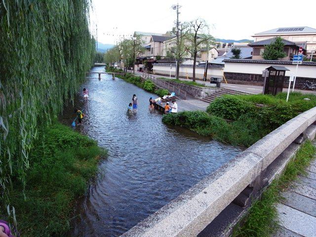 京都 白川 川遊び