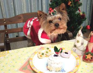 メリークリスマス☆