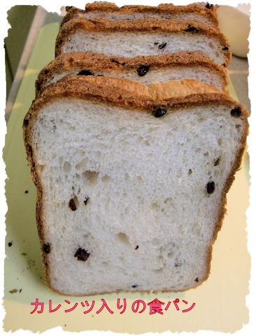 朝ごはんのパン