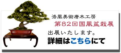 bonsaibana01.jpg