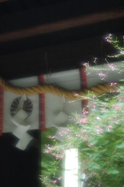 梨木神社・萩祭1日目 1