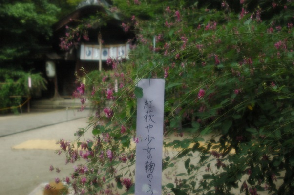 梨木神社・萩祭1日目3