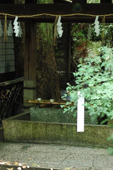 梨木神社・萩まつり ~2日目~1