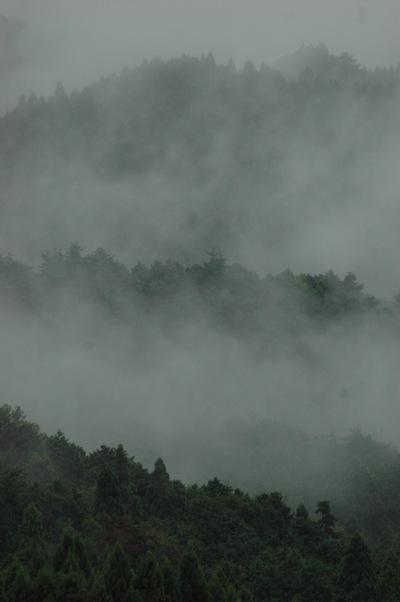 雨の大原1